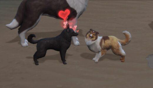 【シムズ4】アキタ家04-そして、子犬